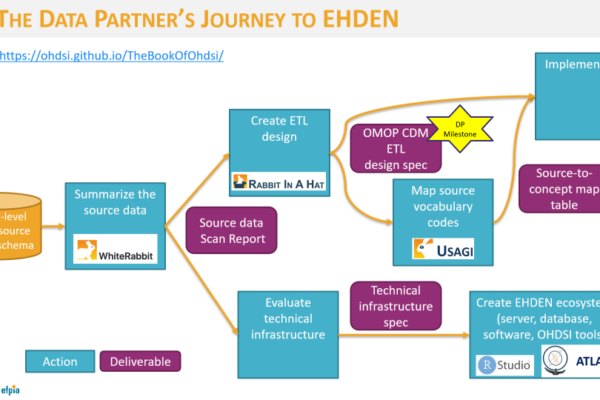 EHDEN almost doubles SME network in 19 countries following certification of third SME cohort